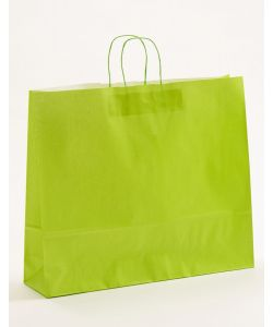Papiertragetaschen mit gedrehter Papierkordel hellgrün 54 x 14 x 45 cm, 050 Stück